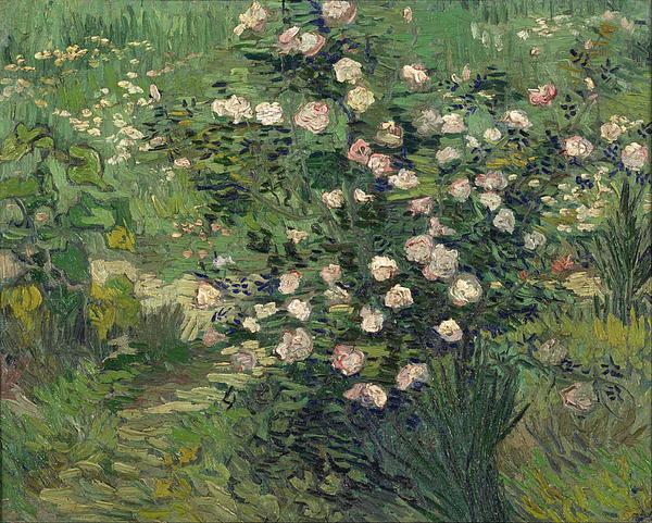 8-roses-vincent-van-gogh