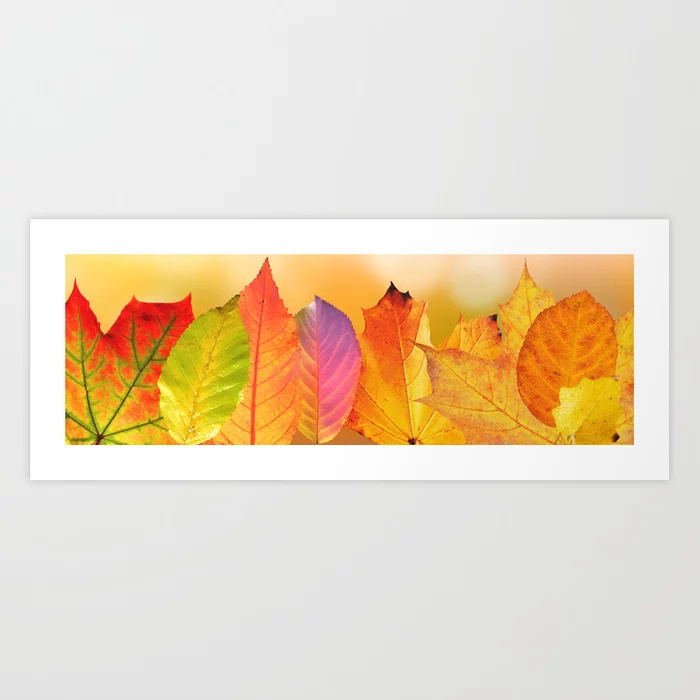 Autumn Leaves Colorful Fine Art Photography Art Print